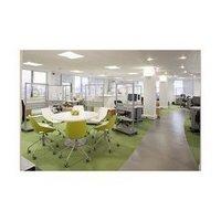 Office Designing service