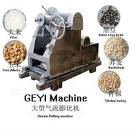 Rice Puff Machinery
