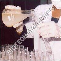 Veterinary Herbal Formulation