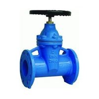 Cast Iron Wedge Gate Valve