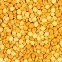 Chickpeas (Chana) Daal