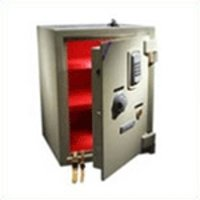 Customized Electronic Safe