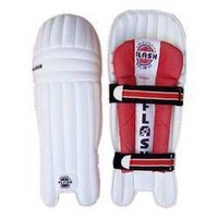 Cricket Protective Equipment