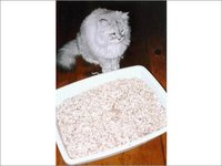 Minerals For Cat Litter
