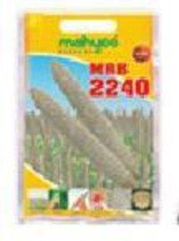 Hybrid Bajra Mrb 2240 Seeds