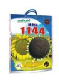 Hybrid Sunflower Mrsf 1144 Seeds