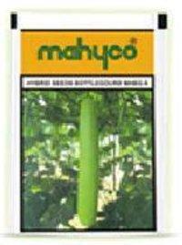 Hybrid Bottlegourd Mhbg 8 Seeds