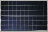 Polycrystalline Photovoltaic Modules