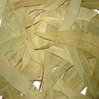 Eucalyptus Leaves Seasoning