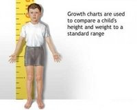 Height Chart/ Growth Chart