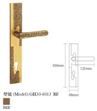 Mortise Entrance Lock