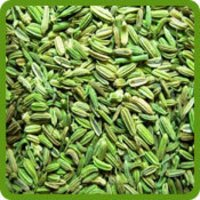 Fenel Seeds (Badishep)