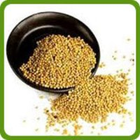 Yellow Mustard Seeds (Rai)
