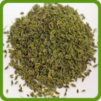 Dill Seeds (Shepu)