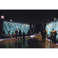 Commercial Aquariums