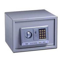 Electronic Safes