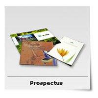 Prospectus Printing