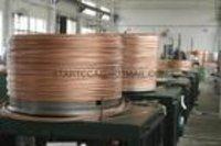 UNS C17200 Beryllium Copper Wire