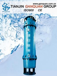 Submersible Self-Priming Pump - Downdraught (QJX)