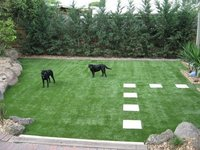 Economy And Durability Used Artificial Grass