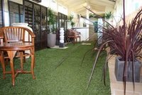 Good Looking And Performance Artificial Turf