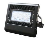 LED Floodlight F60