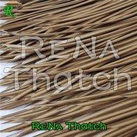 Sugarcane Harvester SQCH03