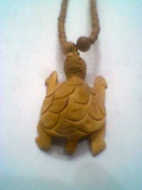 Wooden Turtle