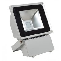 Led Flood Light (Et-Fl30w)