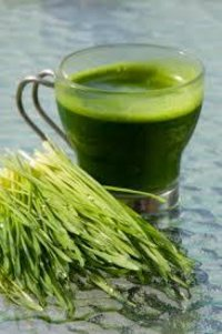 Wheat Grass Powder (Organic)