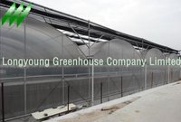 Multi-Span Greenhouse Gothic Plastic Film