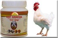 Gout Suraksha