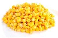 Sweet Yellow Corn