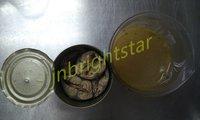 Canned Mackerel In Vegetable Oil
