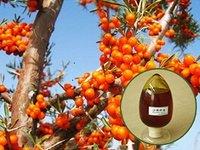 Organic Sea Buckthorn Seed Oil