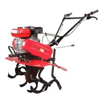 Mini Rotary Gasoline Tiller and Cultivator