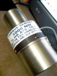 Dynamic Torque Measurement