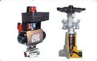 Automotive Valves