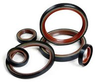 Oil Seals & Hydraulic Seals