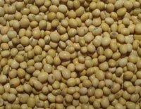 Organic Non Gmo Soybean
