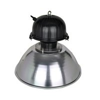 Electrodeless Induction Industrial Lamp