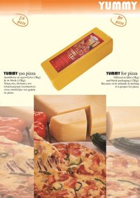 Vegetable Fat Cheese