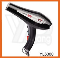 Professional Hair Dryer (YL-6300)