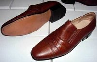 Sleek Shoes
