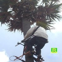 Coconut / Palm Tree Climbing Device