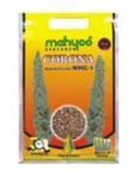Hybrid Castor Corona Mhc 1 Seeds