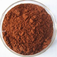 Pine Bark Extract Powder