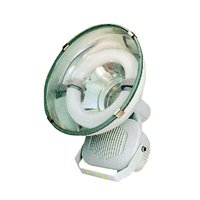 Electrodeless Induction Lamp Flood light