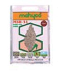 Hybrid Jowar Msh 51 Seeds