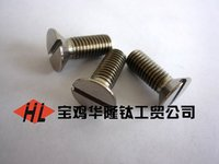 Titanium Countersunk Head Screw